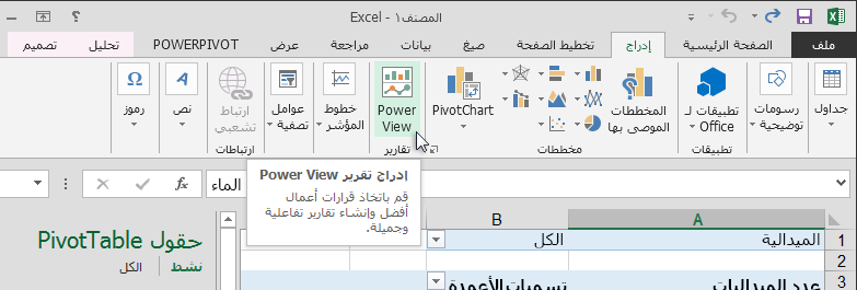 إدراج تقرير Power View