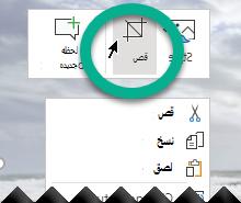 انقر بزر الماوس الأيمن فوق صوره ، وحدد اقتصاص علي شريط الاداات الذي يظهر فوق الصورة.