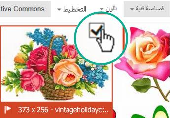 حدد الصورة المصغرة للصورة التي تريد إدراجها. تظهر علامة اختيار في الزاوية العلوية اليمنى.