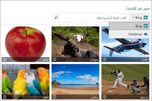 """لقطة شاشة لنافذة """"إدراج صور"""" للصور عبر الإنترنت."""