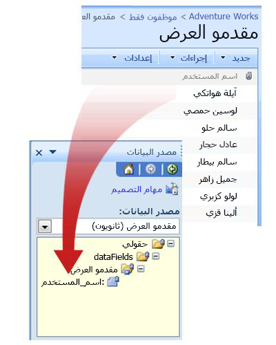 العلاقة بين مصدر البيانات الخارجي ومصدر البيانات في قالب النموذج.