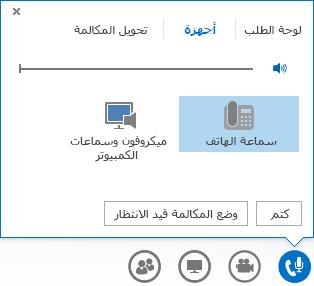 لقطة شاشة لعناصر التحكم بالمكالمات الصوتية