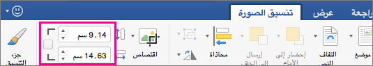 """علامة التبويب """"تنسيق الصورة"""" مع تمييز مربعي الارتفاع والعرض."""