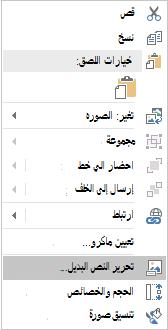 قائمه النص البديل ل Excel Win32 للصور