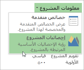 خيارات معلومات المشروع
