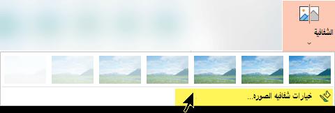 تتيح لك خيارات شفافية الصورة اختيار مستوي شفافية مخصص لصوره