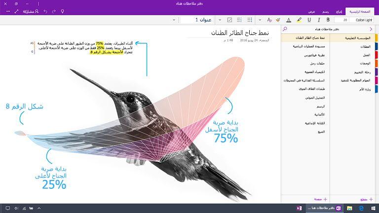 لقطة شاشة من OneNote لـ Windows 10