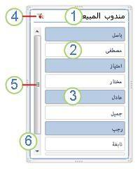 عناصر مقسم طريقة عرض PivotTable