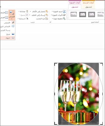 خيار الاقتصاص لاحتواء الشكل معروض على الشاشة