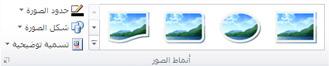 """المجموعة """"أنماط الصور"""" من علامة التبويب """"أدوات الصورة"""" في Publisher 2010"""