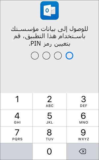 إعداد رقم تعريف شخصي (PIN) للوصول إلى بيانات المؤسسة
