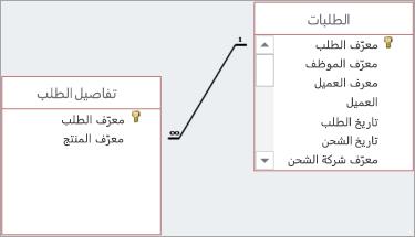 يتم عرض العلاقات بواسطة الخطوط المرسومة بين الحقول الأصل والحقول الخاصة.