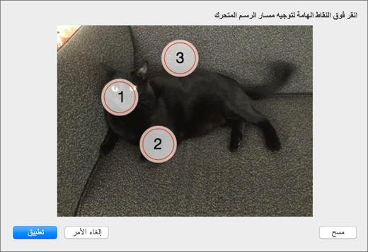 """تعرض صوره مع عده النقاط الهامه محدده ل# يتم استخدامها في """"خلفيه تفاعليه"""" في PowerPoint ذات تعداد رقمي."""
