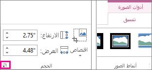 """مشغّل مربع الحوار في المجموعة """"الحجم"""" ضمن """"أدوات الصورة"""" على علامة التبويب """"تنسيق"""""""