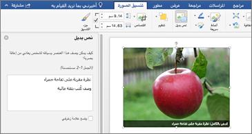 مستند Word مع صورة وجزء النص البديل على اليسار