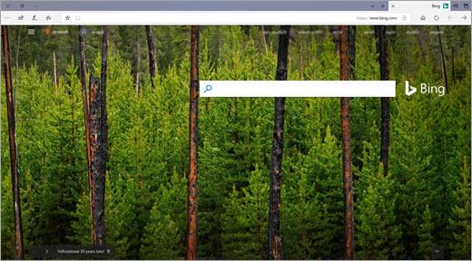 صفحة Bing الرئيسية