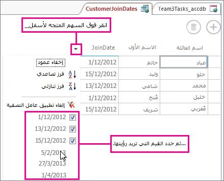 تصفية عمود في استعلام في تطبيق Access.