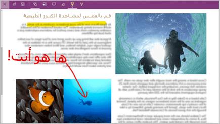 لقطه شاشه لملاحظه ويب علي صفحه Microsoft Edge