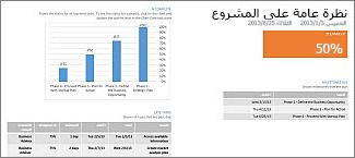 تقرير نظرة عامة حول المشروع