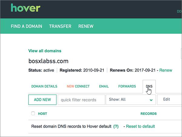 اختيار علامة التبويب DNS