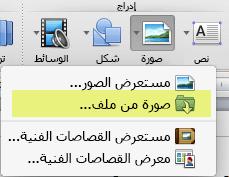 على علامة تبويب الصفحة الرئيسية للشريط، ضمن إدراج، انقر فوق صورة > صورة من ملف.