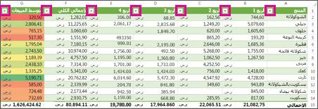 جدول Excel يعرض عوامل تصفية مضمنة