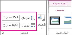 """المربعان """"العرض"""" و""""الارتفاع"""" في علامة التبويب """"تنسيق"""" ضمن أدوات الصورة"""""""