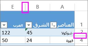تشير الخطوط المزدوجة بين الصفوف والأعمدة إلى صفوف أو أعمدة مخفية