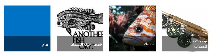 أربع لوحات فئات، تتضمّن كل واحدة منها صورة صيد سمك بالإضافة إلى عنوان