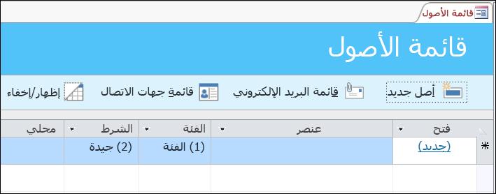 نموذج قائمة الأصول في قالب قاعدة بيانات أصول Access