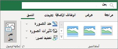 """زر """"نص بديل"""" علي شريط Excel for Windows"""