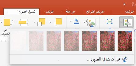 تعيين خيارات شفافية الصورة