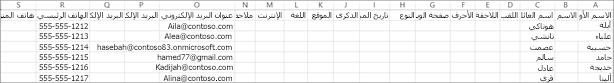 إليك ما يبدو عليه ملف CSV النموذجي  مع بعض المعلومات حول جهات الاتصال الموجودة فيه.