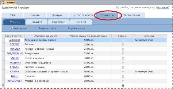 разделът ''разширени'' на шаблона за база данни за услуги