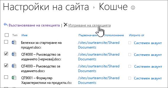 Бутон за изтриване на 2013 второ ниво Кошче на SharePoint