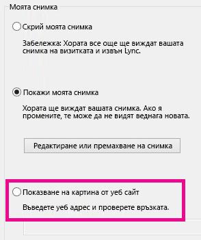 """Екранна снимка на част от прозореца с опции за """"Моя снимка"""" на Lync с осветена снимка, избрана от уеб сайт"""