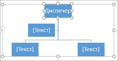 Въвеждане в поле в графика SmartArt