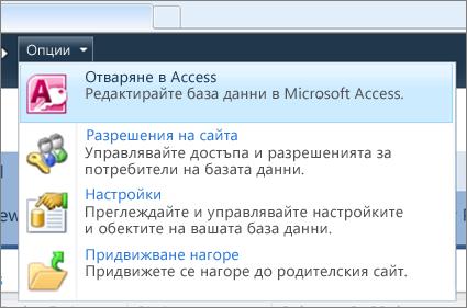 Менюто ''Опции'' на набор от уеб бази данни в SharePoint