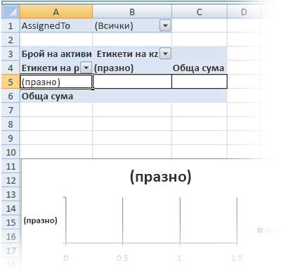 празен отчети на обобщена таблица и обобщена диаграма