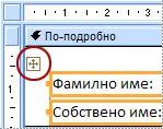 Селектор на оформление във формуляр в изглед за проектиране