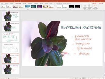 Ръкопис към Designer