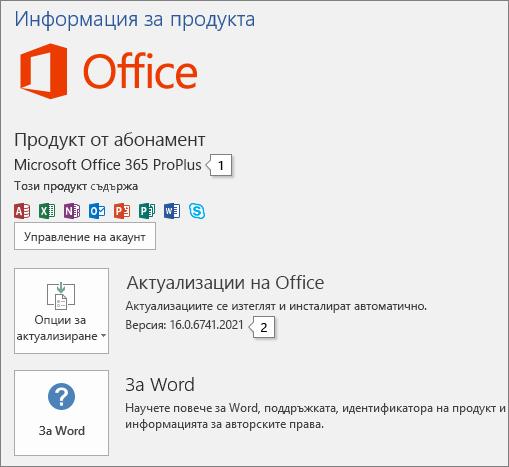 """Екранна снимка на страницата """"Акаунт"""", която показва името на продукта на Office и пълния номер на версията"""