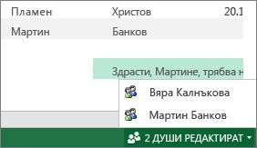 Много автори в Excel Online