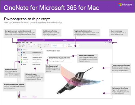 Ръководство за бърз старт в OneNote 2016 for Mac