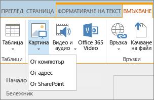 """Екранна снимка на лентата на SharePoint Online. Изберете раздела """"Вмъкване"""" и след това изберете картина, за да изберете дали да качите файл от вашия компютър, уеб адрес или местоположение в SharePoint."""