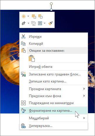 """Екранна снимка на опциите на """"Форматиране на картина"""" в Publisher."""