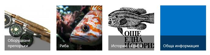 Четири категории заглавки, всяка с изображение на риболов и заглавие