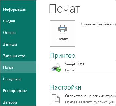 """Екранна снимка на опциите на """"Печат"""" в Publisher."""