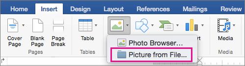 """В раздела """"Вмъкване"""" е осветена картина от файл."""