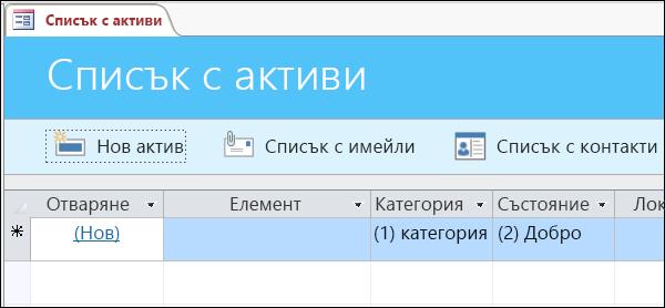 """Формуляр """"Списък с активи"""" в шаблона за база данни """"Активи"""" на Access"""